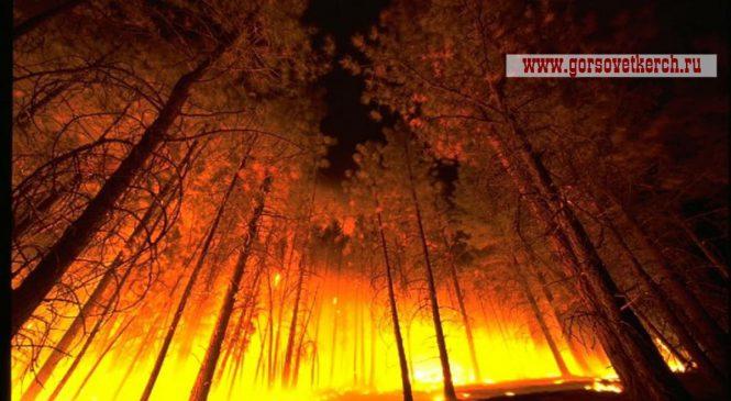 20-23 сентября в Крыму сохранится местами чрезвычайная пожарная опасность
