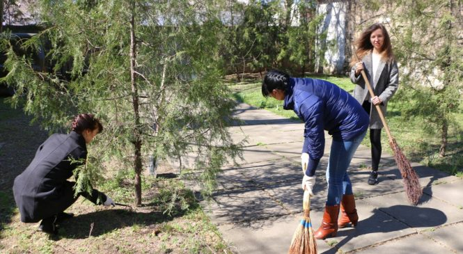 Городской совет вновь поддержал акцию по благоустройству города