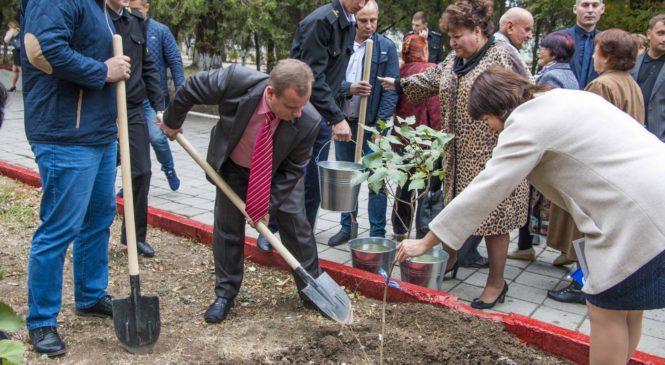 В сквере Летчиков высадили сирень в память о героях, освобождавших город
