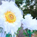 Стартовала акция «Белый цветок»