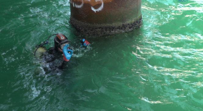 Чистая акватория: водолазы демонтируют вспомогательные конструкции на стройке Крымского моста