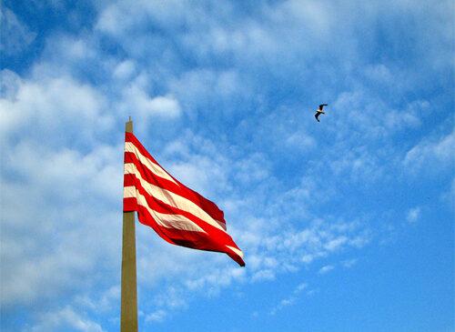 Хозяйствующих субъектов просят обновить флаги