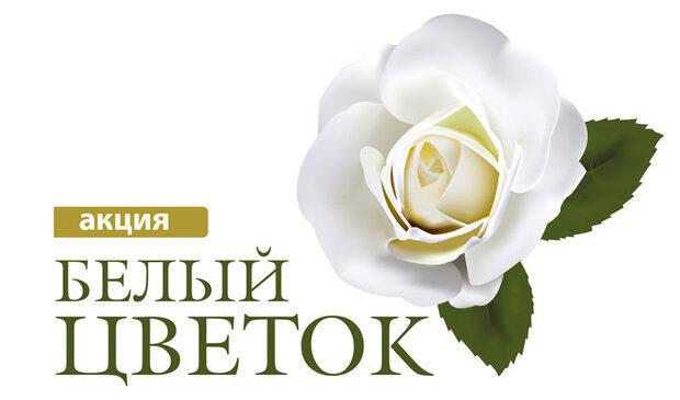 План мероприятий по проведению в Керчи акции «Белый цветок»
